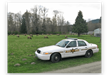 Jefferson County Sheriffs Office patrol car with the Brinnon elk herd as a back drop.
