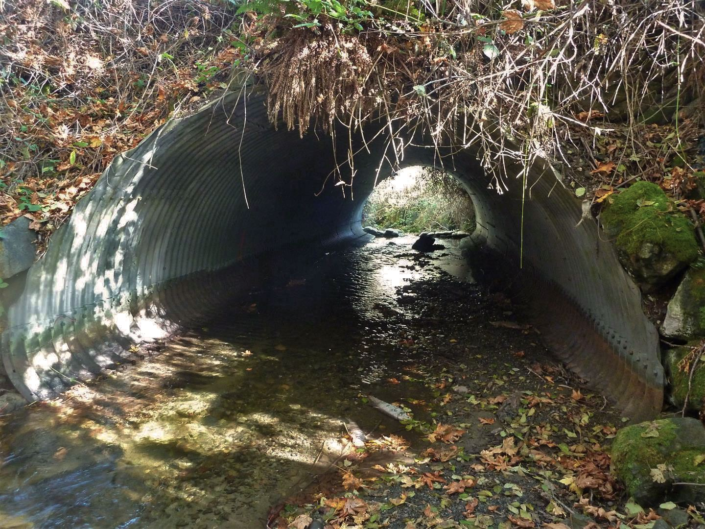A view through the culvert before construction.